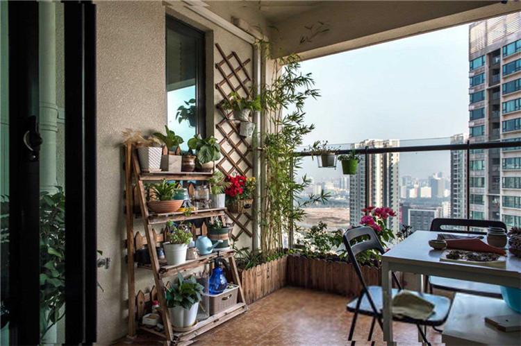 济南家居装饰中常见的十种绿色植物,你都认识吗?